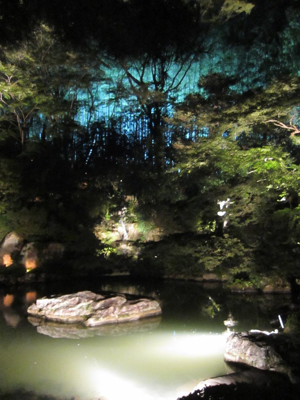 Shorenin Temple Illumination