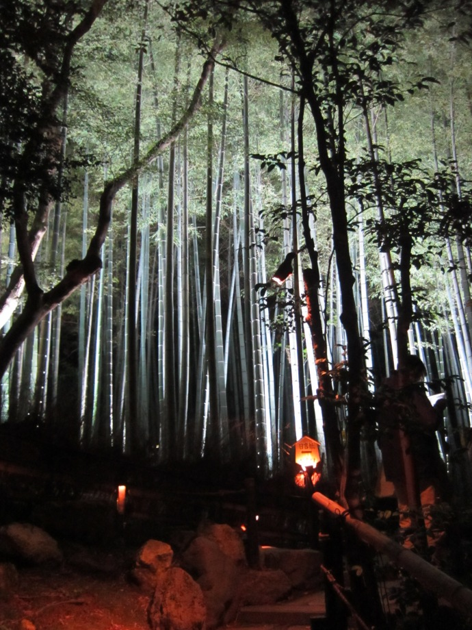 Shorenin Monseki Temple Fall Illumination